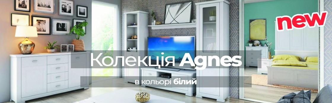 agnes_new