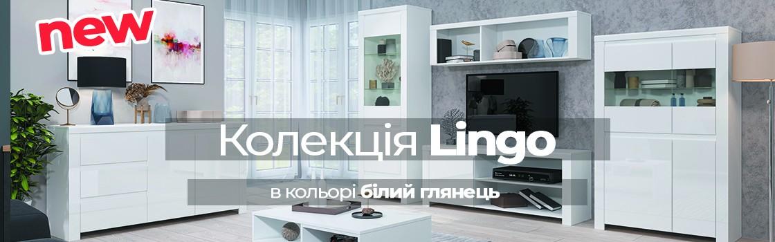lingo1_new