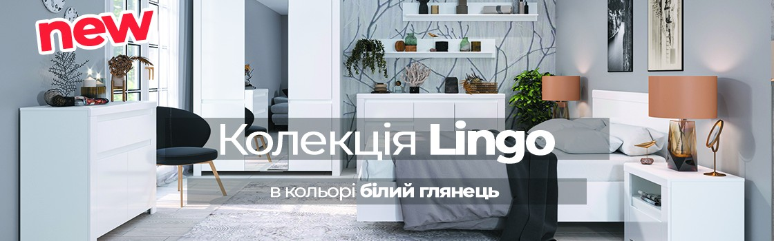 lingo2_new